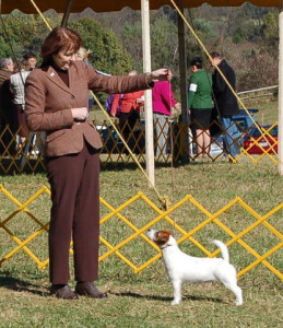 Middleburg Dog Show 10-26-2013 Best of _W